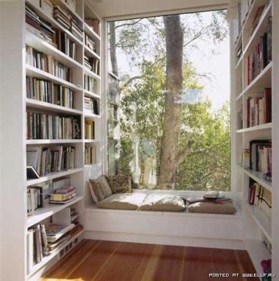dream library 2